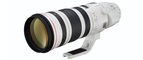Canon EF 200-400 f/4L IS 1.4x Availability Info