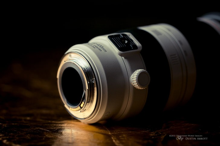Product Shots 2 728x485 - Review: Canon EF 100-400mm f/4.5-5.6L IS II