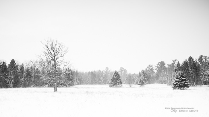 "© 2016 Thousand Word Images by Dustin Abbott We started off the winter with no snow at all, but over the past month the frequency of the storms has accelerated. We are currently in our third day of snowfall in a row, with more forecast throughout the week. I liked the overall look and feel of this image despite the shooting challenges. I shot the little Rokinon 21mm f/1.4 wide open, so I was up against the shutter speed limit of my M3 despite the overcast and snowfall (1/4000th second). The falling snow further created some natural texture. I was able to get what I wanted from the image by doing a B&W conversion and then pulling down the black level a bit. I stopped there because I was already happy with what I got. Not a technically perfect image, but I like the mood overall. Technical Information: Canon EOS M3, Rokinon 21mm f/1.4 ED AS UMC, Processed in Adobe Lightroom CC, Photoshop CC, and Alien Skin Exposure X (use code ""dustinabbott"" to get 10% off) Want to know more about me or make contact? Take a look at my website and find a lot of ways to connect and view my work."