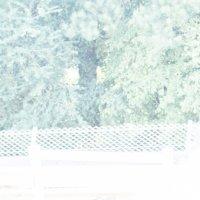 Y-IMG_0124-6.jpg