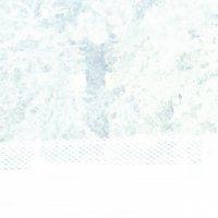 Y-IMG_0124-7.jpg