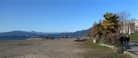 When all you have is a Toy Camera - A Nice Day in Vancouver is This Facing English Bay.png