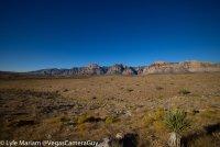 VegasCameraGuy-2102-50pct.jpg