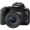 Canon EOS Rebel SL3 / 250D