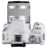 canon 1 2 168x168 - Isn't That Cute? The EOS Rebel SL2 in White & Silver