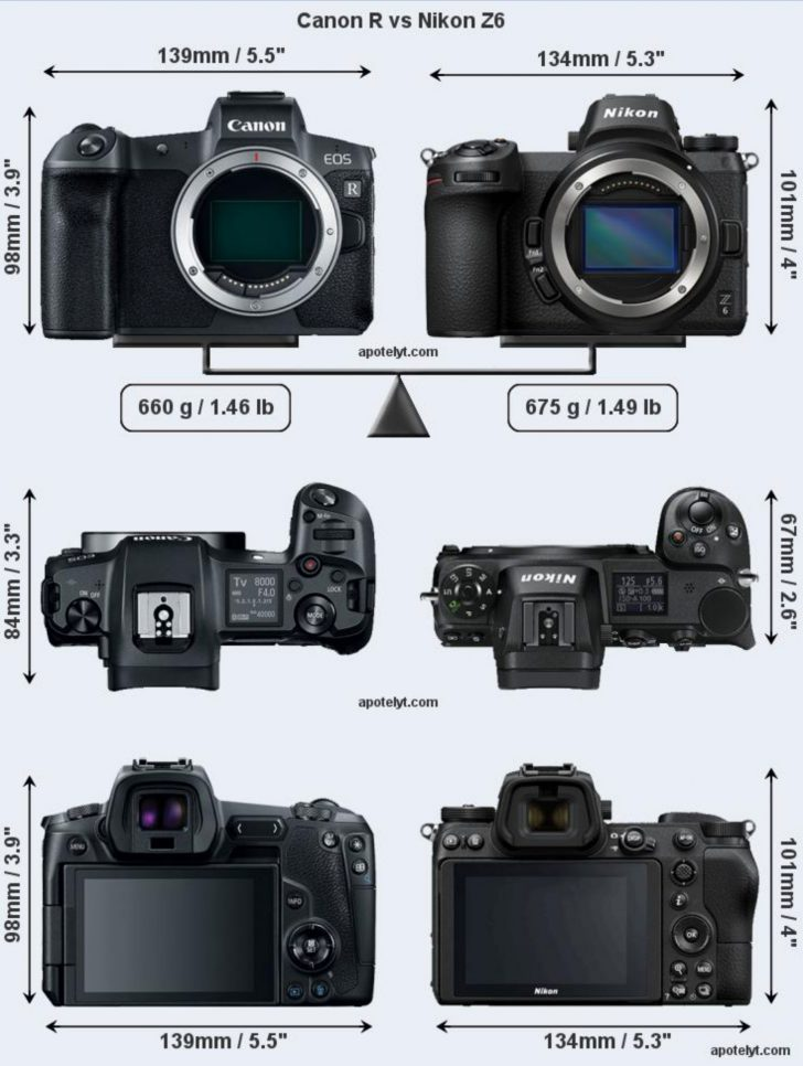 canonrnikonz7 728x966 - Canon EOS R visual size comparison against the Sony A7 III and Nikon Z6