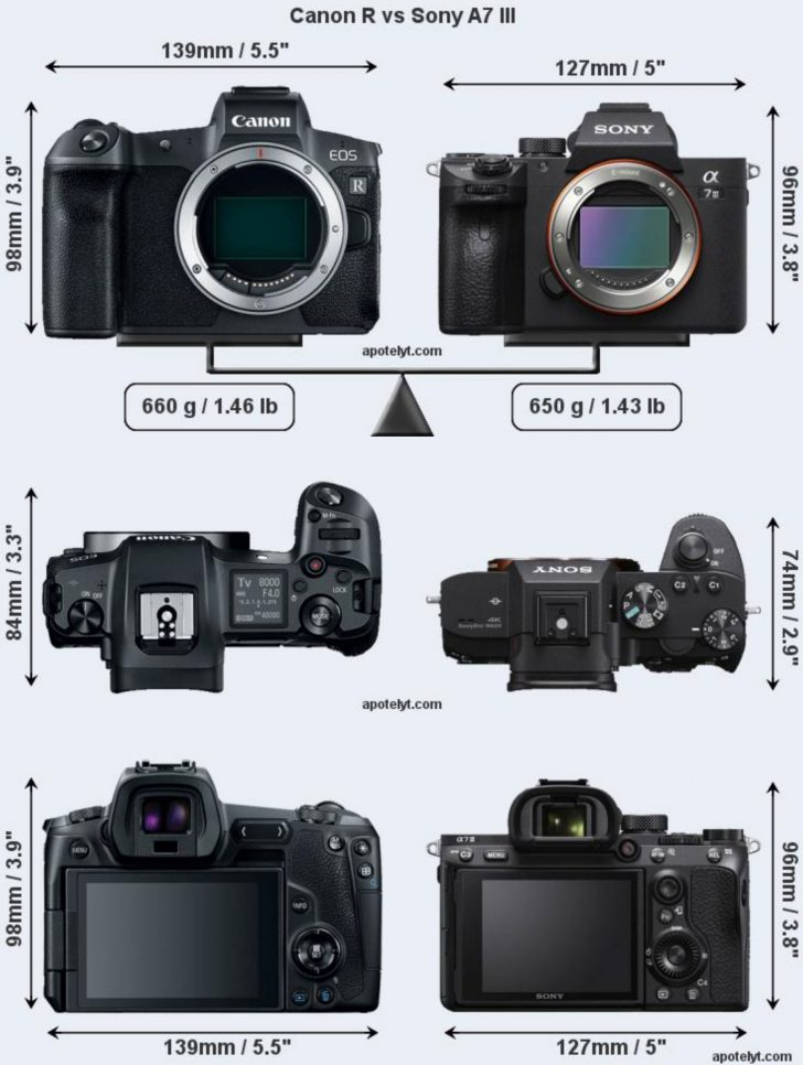 canonrsonya7iii 728x966 - Canon EOS R visual size comparison against the Sony A7 III and Nikon Z6