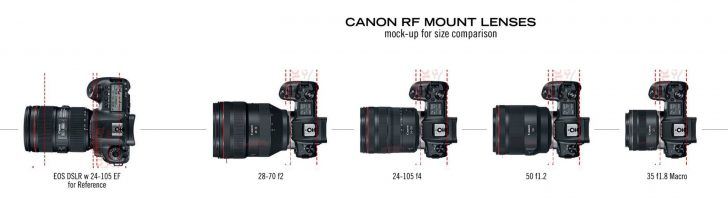 rflenscomparison 728x199 - Canon RF lens size comparison when mounted to the Canon EOS R body