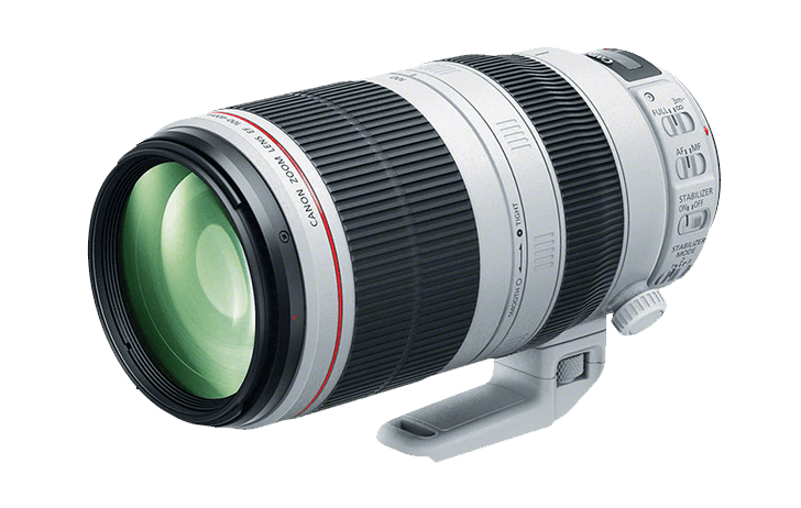 What about that EF 200-600mm f/4.5-5.6 IS from Canon?