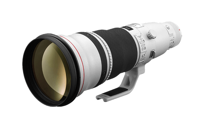 Review: Canon EF 600mm f/4L IS III USM