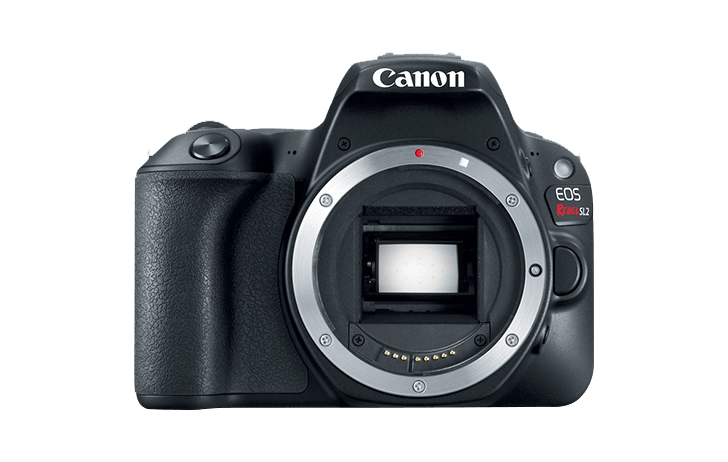Canon EOS Rebel SL2/200D replacement next from Canon?