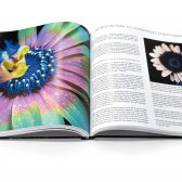 PDKP0042 168x168 - Kickstarter: Macro Photography: The Universe at our Feet