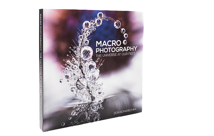 Kickstarter: Macro Photography: The Universe at our Feet