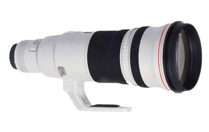 Canon will release RF versions of the 300mm f/2.8 and 500mm f/4 in early 2022 [CR2]